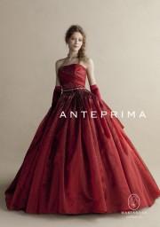 ANTEPRIMA ANT0037